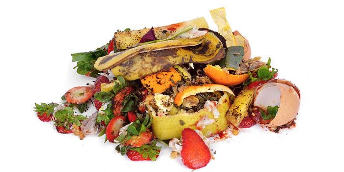Organics Food Waste