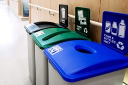 The Use of Images vs. Words on Recycling Signage, Pt 1